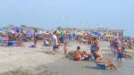 ocean city nj wp (85)